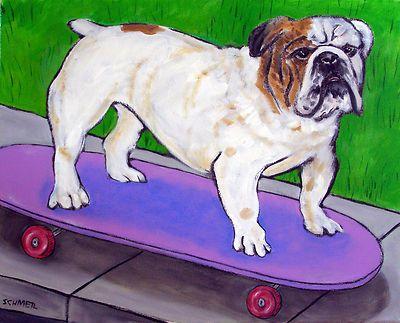BULLDOG SKATEBOARDING Picture animal dog art on Canvas Print schmetz