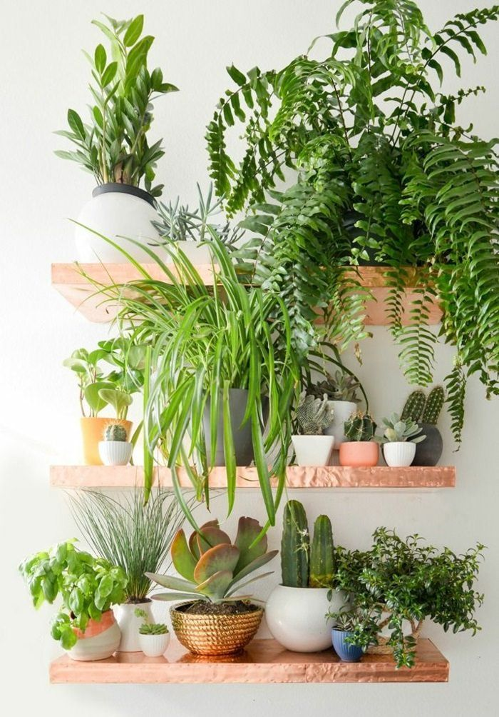 99 Great Ideas To Display Houseplants Indoor Plants Decoration Plants Copper Diy Houseplants Indoor