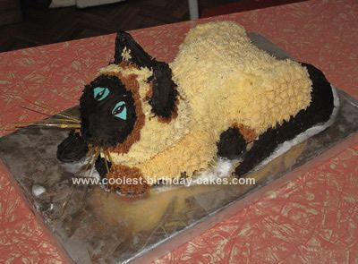 My Daughter Wanted A Siamese Cat Birthday Cake For Her 6th I Made Three Chocolate Cakes 23cm Round Square And 12cm Ahead Of