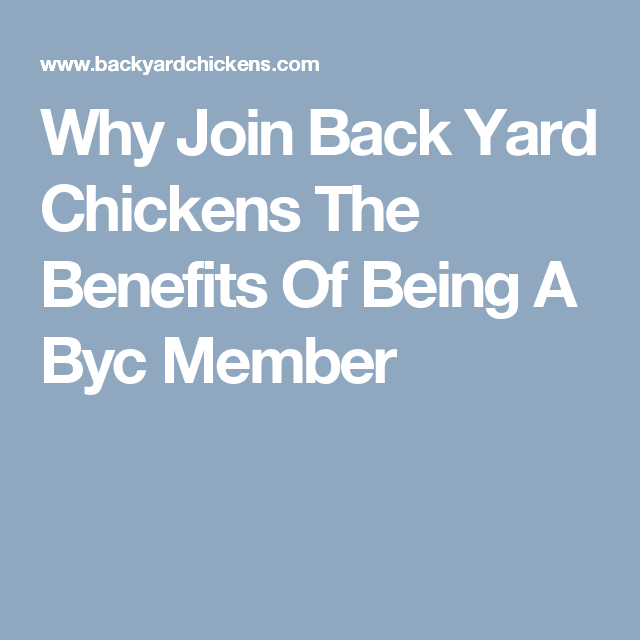Why Join Back Yard Chickens? The Benefits Of Being A BYC ...