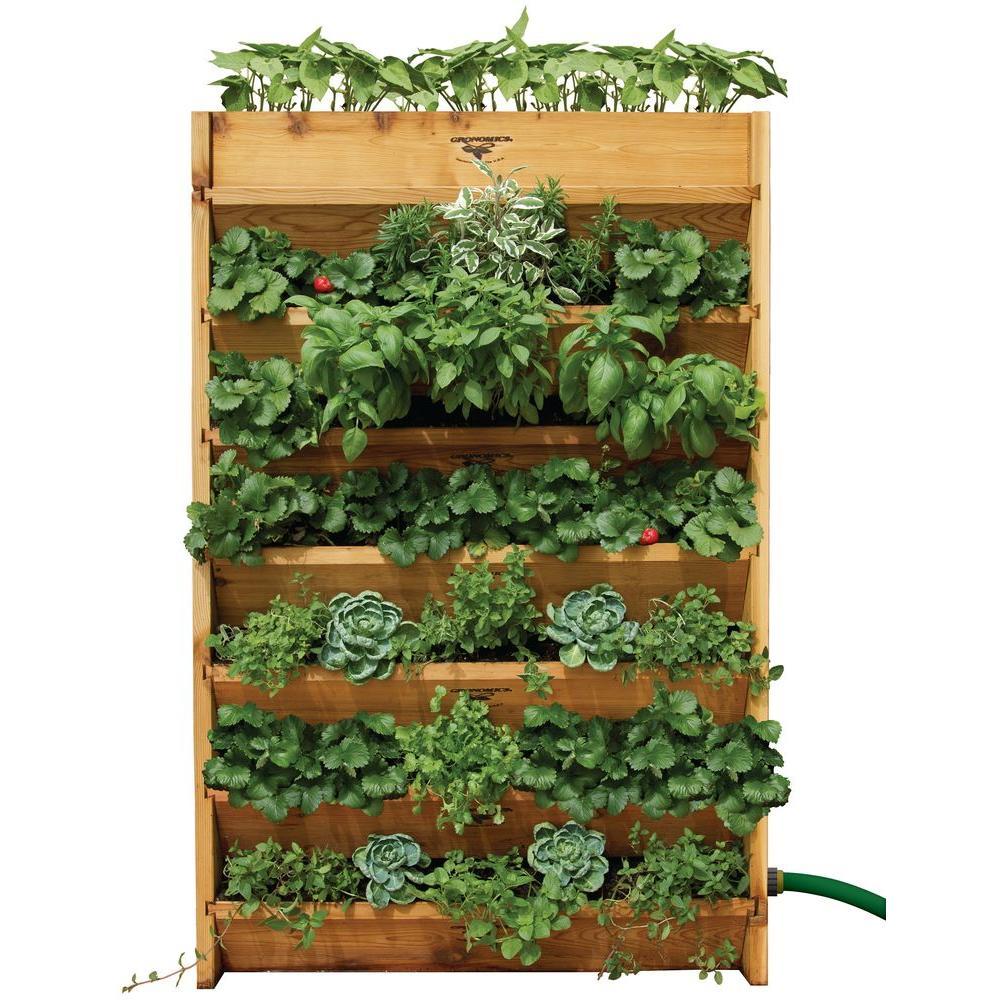 10 id es pour vos plantes ext rieures astuces. Black Bedroom Furniture Sets. Home Design Ideas