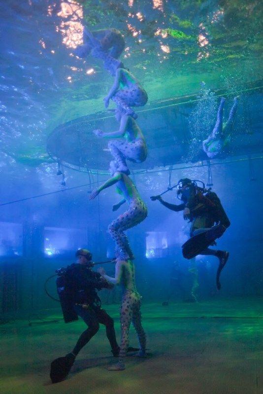 Work for Cirque du Soleil as a scuba diver!