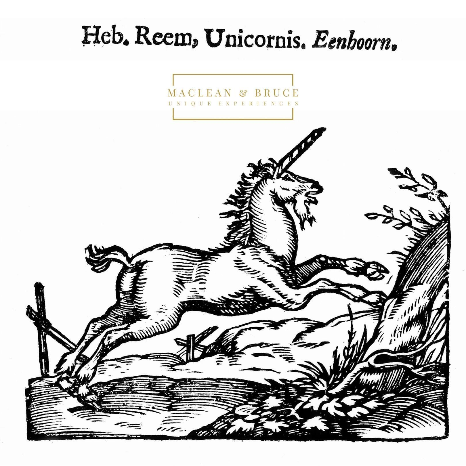 Get your party hat on, it's #NationalUnicornDay!  This mighty, mythical beast is Scotland's beloved #national animal and can be found in statues, symbols and crests all over Scotland. Undefeatable, pure, innocent and powerful, the unicorn can only be tamed by kings and virgins.  LUXURY | WHISKY | TRAVEL | EXPERIENCES |  SCOTLAND www.macleanandbruce.com |info@macleanandbruce.com  #Luxury #whisky #travel #experiences #Scotland #Scottish #luxurytravel #luxurylifestyle #DMC #hospitality #unicorn #na