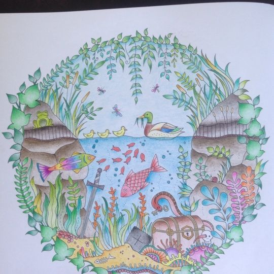 Johanna Basford Enchanted Forest Coloring Book Finished