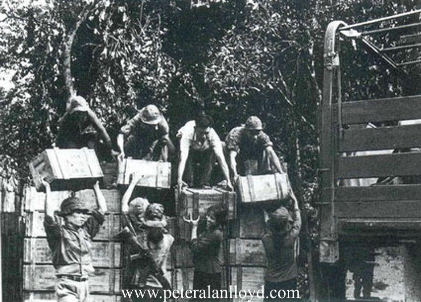 peter alan lloyd BACK novel backpackers in danger sihanouk ...