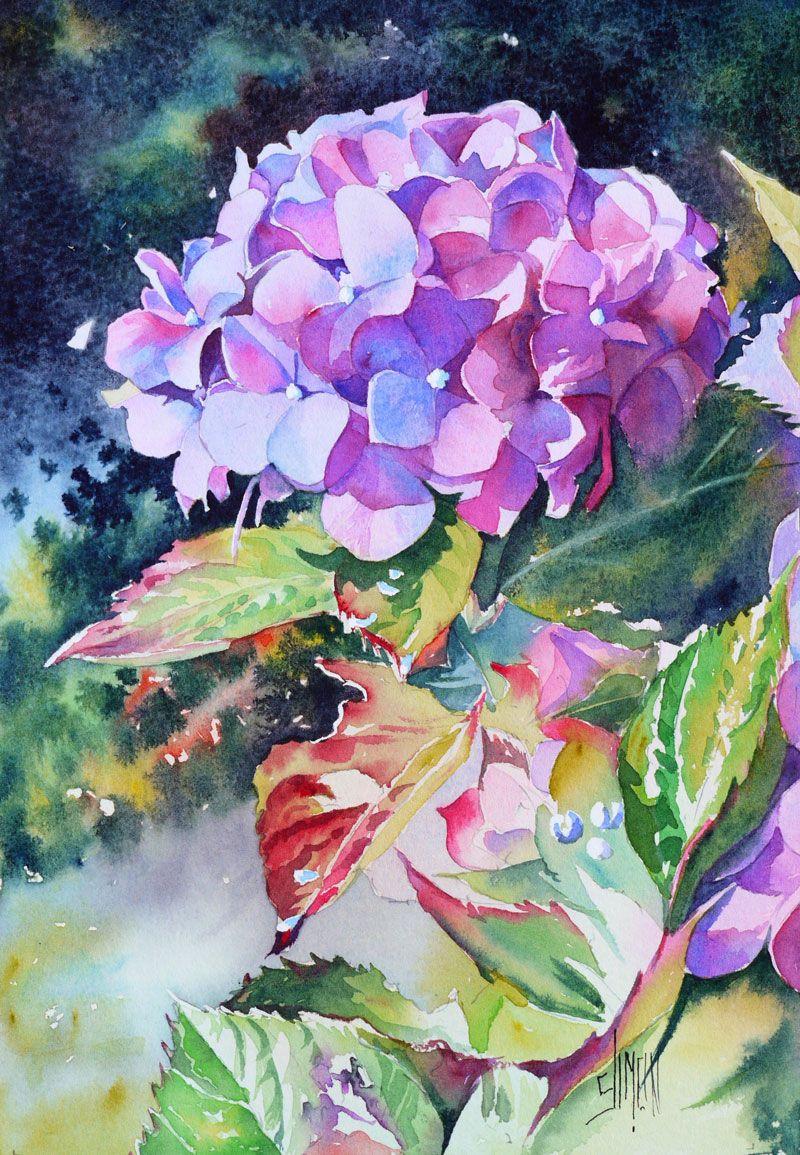Hortensia Joel Simon Peinture Fleurs Aquarelle Florale Et
