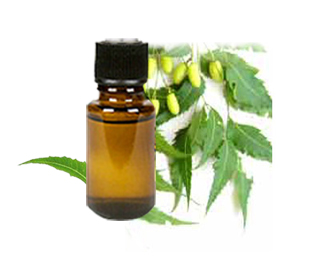 Neem Oil 1 Oz Natural Pesticide Fungicide Skin Hair Care For Pets People Price Red Eczema Remedies Natural Psoriasis Remedies Natural Eczema Remedies