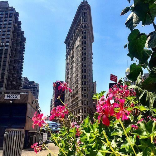 The Flatiron Building by @scottlipps #nyc
