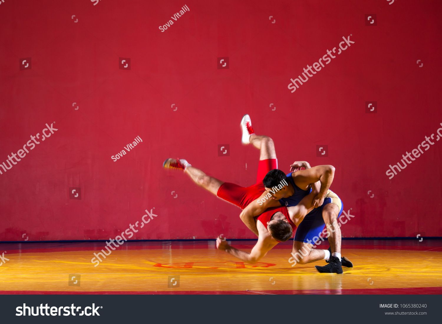 Two Strong Wrestlers In Blue Wrestling Tights Are Wrestlng And Making A Suplex Wrestling On A Yellow Wrestling Carpet In Th Wrestling Tights Wrestler Wrestling