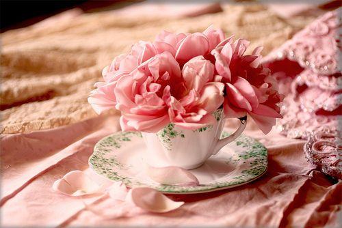 Rosa tão cor de rosa.