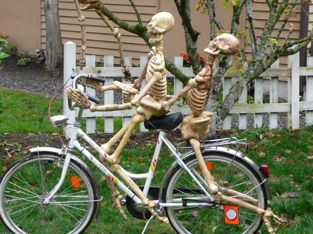 skeleton couple on bicycle halloween yard decorations