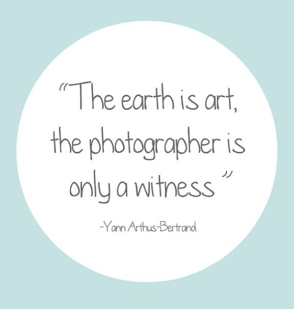 Photography Quotes. A Camera Doesn'T Make A Great Picture