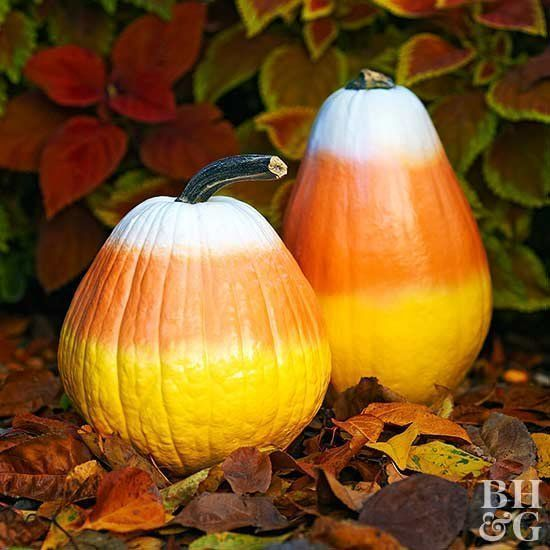 43 Easy Painted Pumpkin Ideas to Try This Year #paintedpumpkins Candy Corn Painted Pumpkins #pumkinpaintideas 43 Easy Painted Pumpkin Ideas to Try This Year #paintedpumpkins Candy Corn Painted Pumpkins #paintedpumpkinideas 43 Easy Painted Pumpkin Ideas to Try This Year #paintedpumpkins Candy Corn Painted Pumpkins #pumkinpaintideas 43 Easy Painted Pumpkin Ideas to Try This Year #paintedpumpkins Candy Corn Painted Pumpkins #paintedpumpkinideas