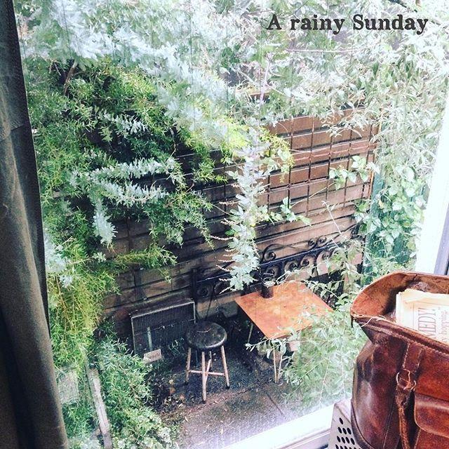 . 雨の日も乙なもんです。 . #autumn #green #gardening #flower #antique #rain #junk #ガーデン #庭 #錆び #ガーデニング #サビ #ジャンク #古道具 #アンティーク #ヴィンテージ #暮らし #花のある暮らし #秋 #garden #窓 #雨