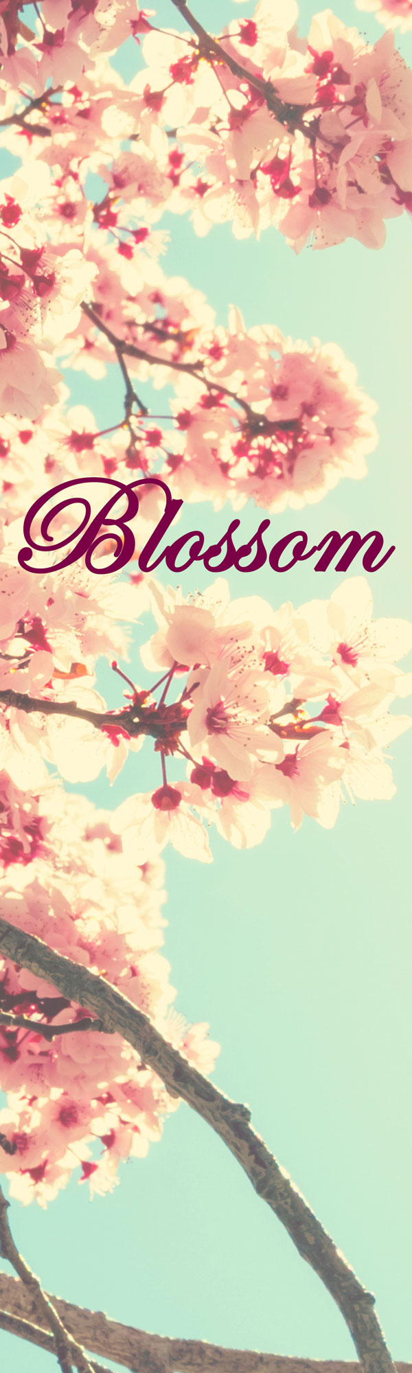 The Name Blossom Is An English Baby Name In English The Meaning Of The Name Blossom Is Fresh English Baby Names Baby Names Cute Names