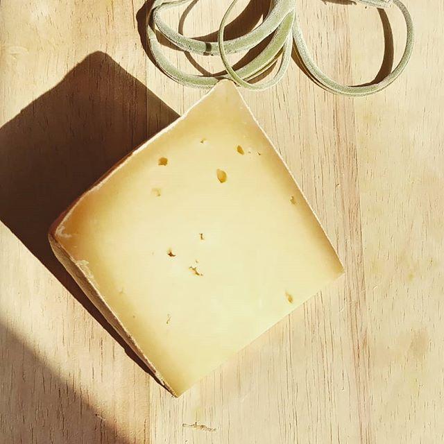 Fontina. Das Original aus dem Aostatal. . . . #käse #käseliebe #käselover #ichliebekäse #feinschmecker #feinkost #genusspur #genussmomente #fontina #italienischeküche #italienischerkäse #okäse #fonduecheese