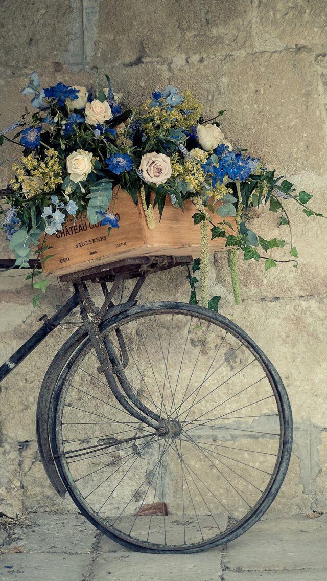 Wallpaper Iphone In 2020 Bicycle Wallpaper Wallpapers Vintage Flower Wallpaper