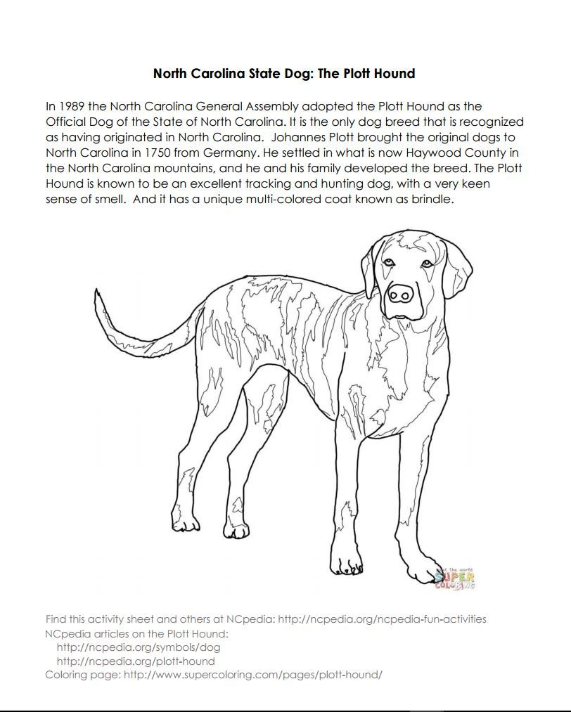 NCpedia North Carolina State Dog Activity Page