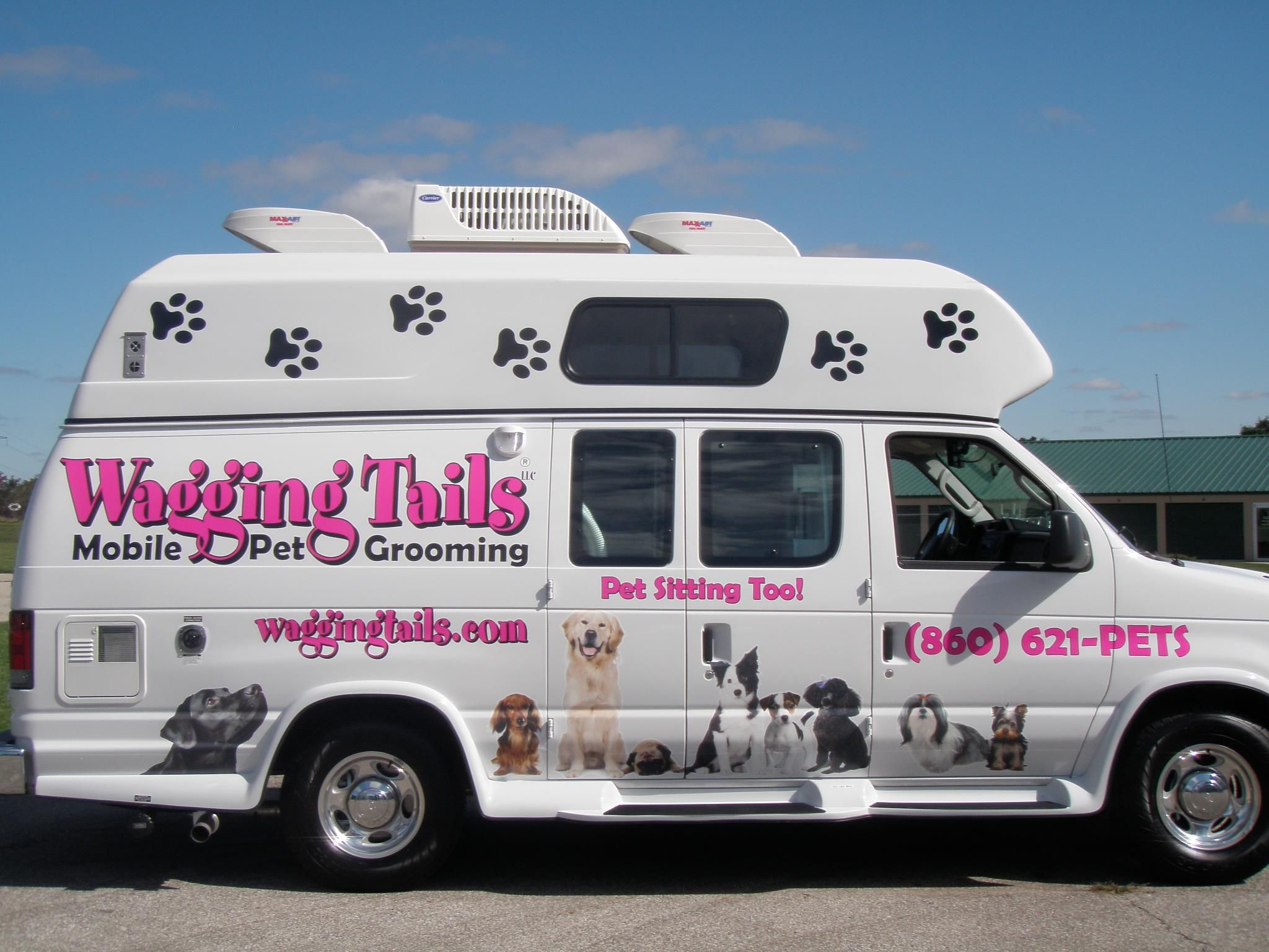 Services Mobile pet grooming, Dog teeth, Dog groomers