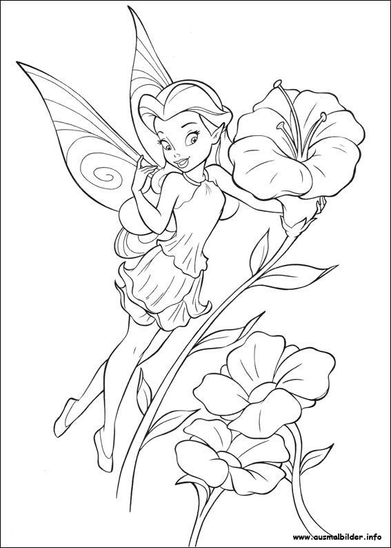 Ausmalbilder Feen Tinkerbell Coloring Pages Fairy Coloring Pages Disney Coloring Pages