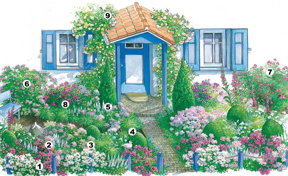 Rosen-Paradies im halbschattigen Vorgarten Paradies - gartenplanung beispiele kostenlos