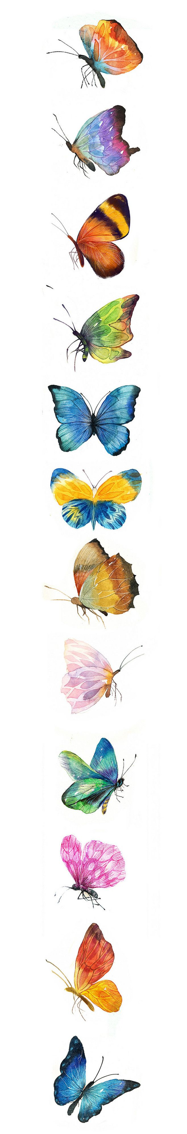Papillons peintes