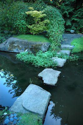 Stepping stone path through Asian style garden