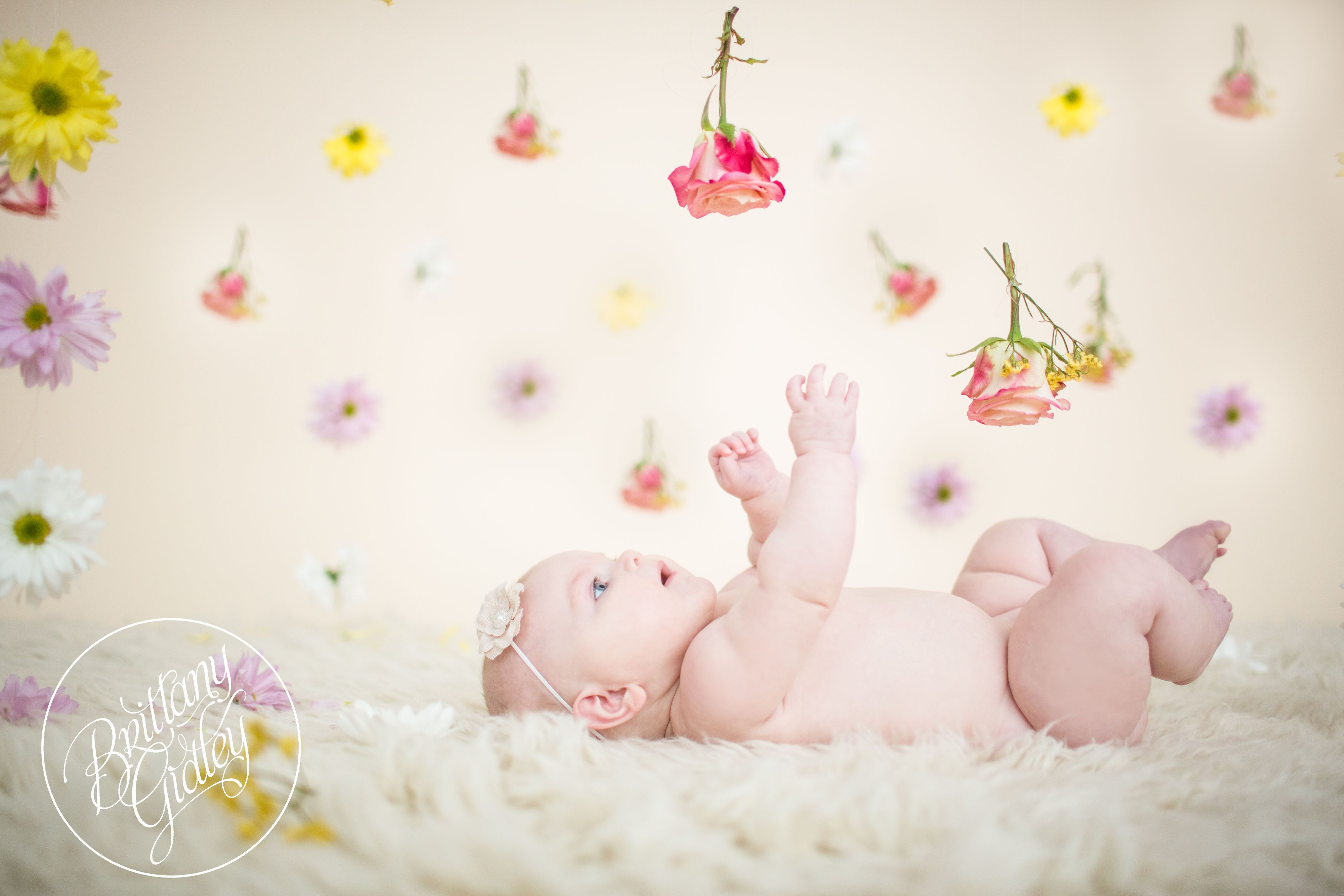 Cleveland Baby Photographer Lydia 6 Months