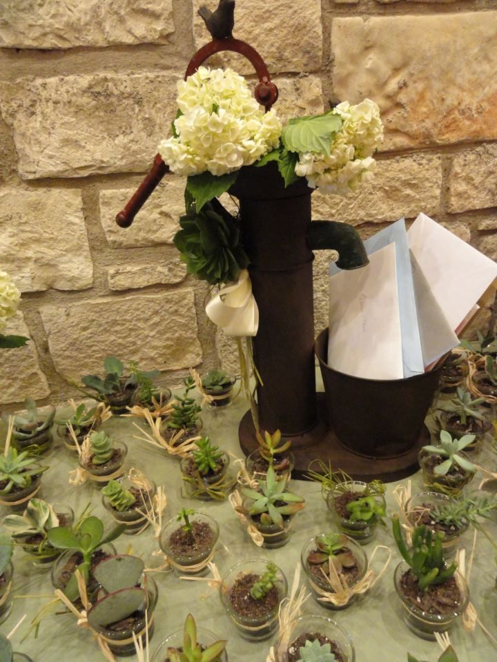 """wedding card """"well"""" wishes with succulent party favors"""