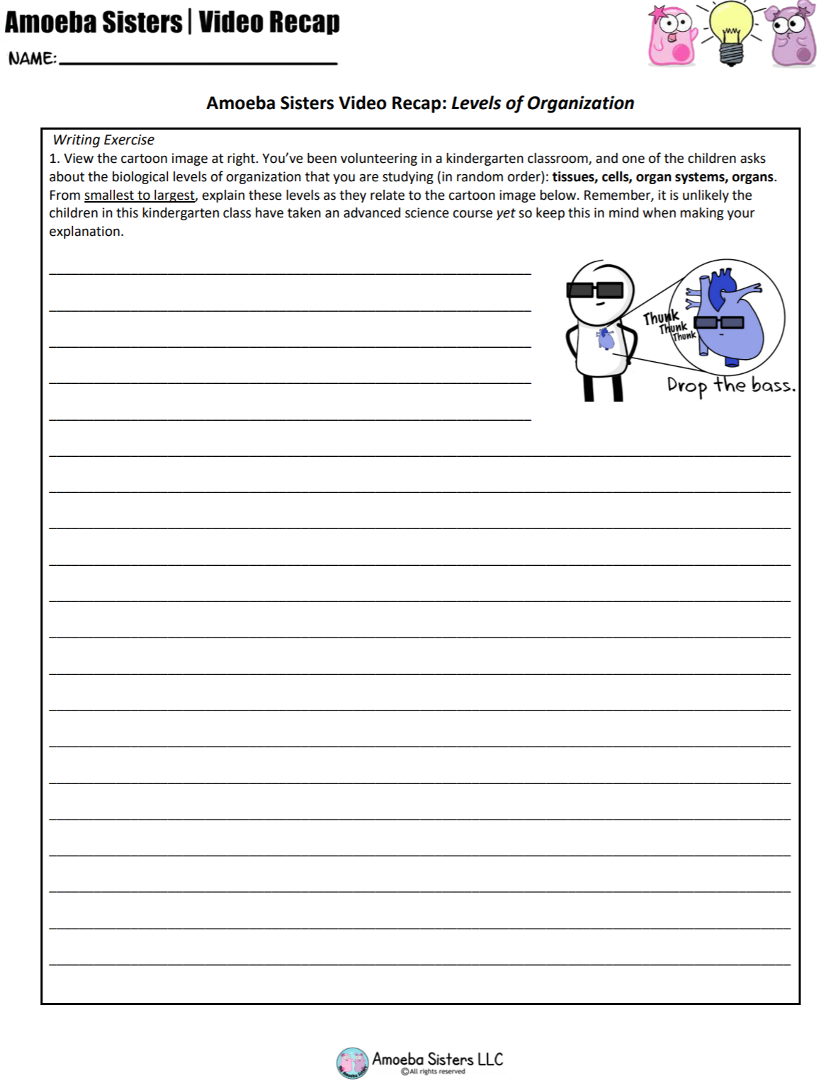 Worksheets Levels Of Organization Biology Worksheet biological levels of organization our handout makes a great exit ticket and writing exercise goes with amoeba sisters