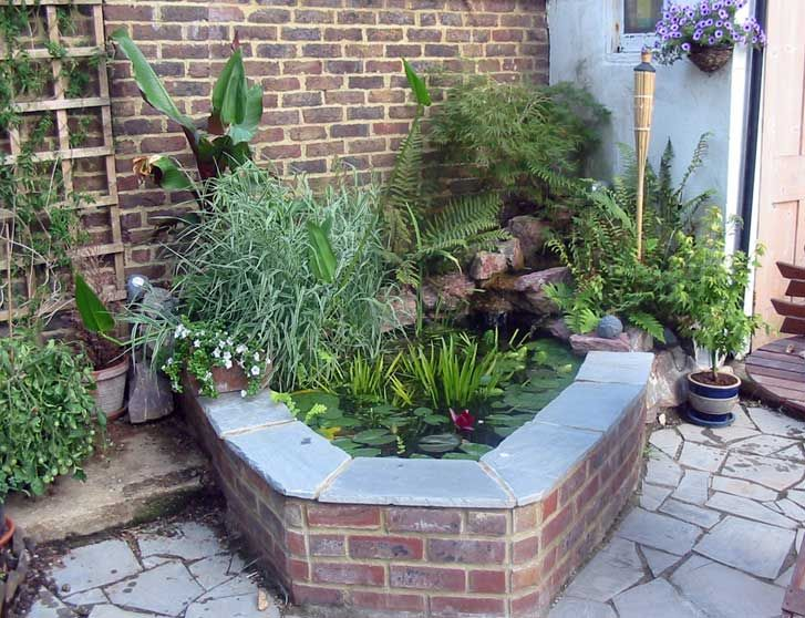 Small fish pond landscape hanover ponds brighon and hove for Raised koi pond ideas