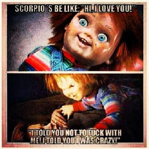 Image Result For Scorpio Season Scorpio Funny Scorpio Love