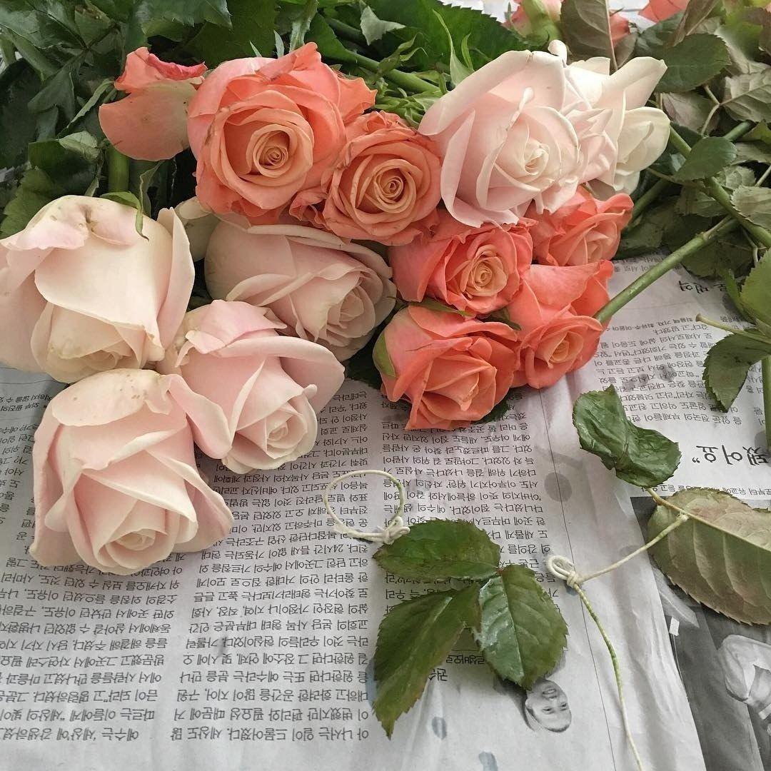 Сохранённые фотографии Леры – 1 880 фотографий   Цветы ...
