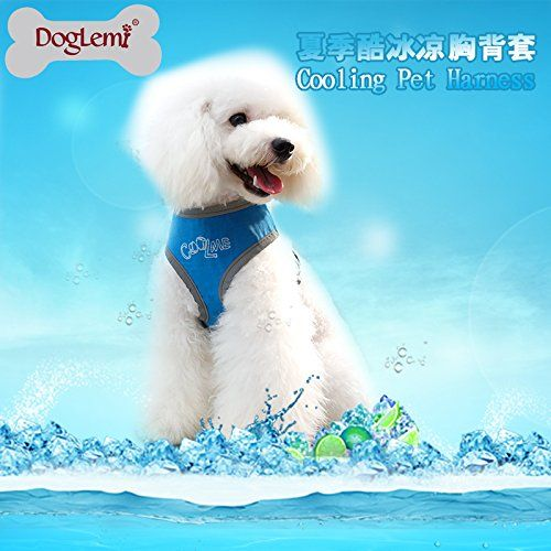 Doglemi Summer Cooling Pet Harness Ice Padded Dog Vest Harness Xs Blue Easypetlife Https Www Amazon Co Uk Dp B01d4f Pet Harness Dog Vest Harness Cool Pets