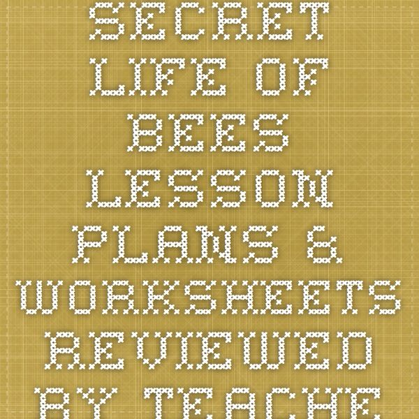 Secret Life of Bees Lesson Plans & Worksheets Reviewed by ...