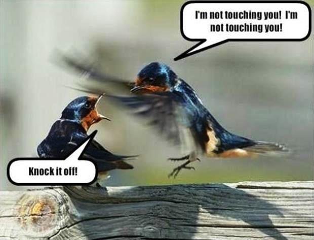 I'm not touching you!