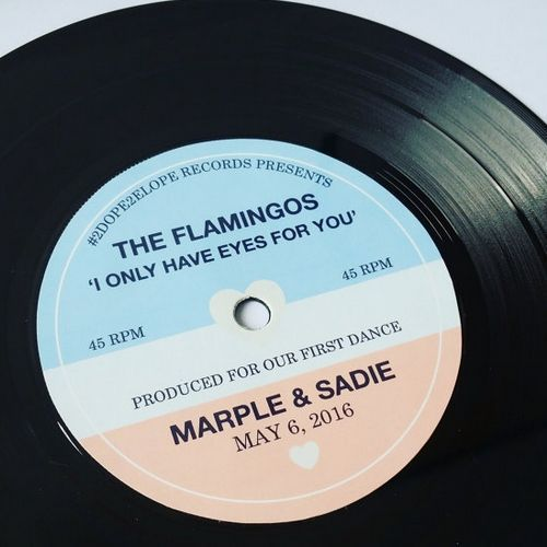 The Flamingos Vinyl Record