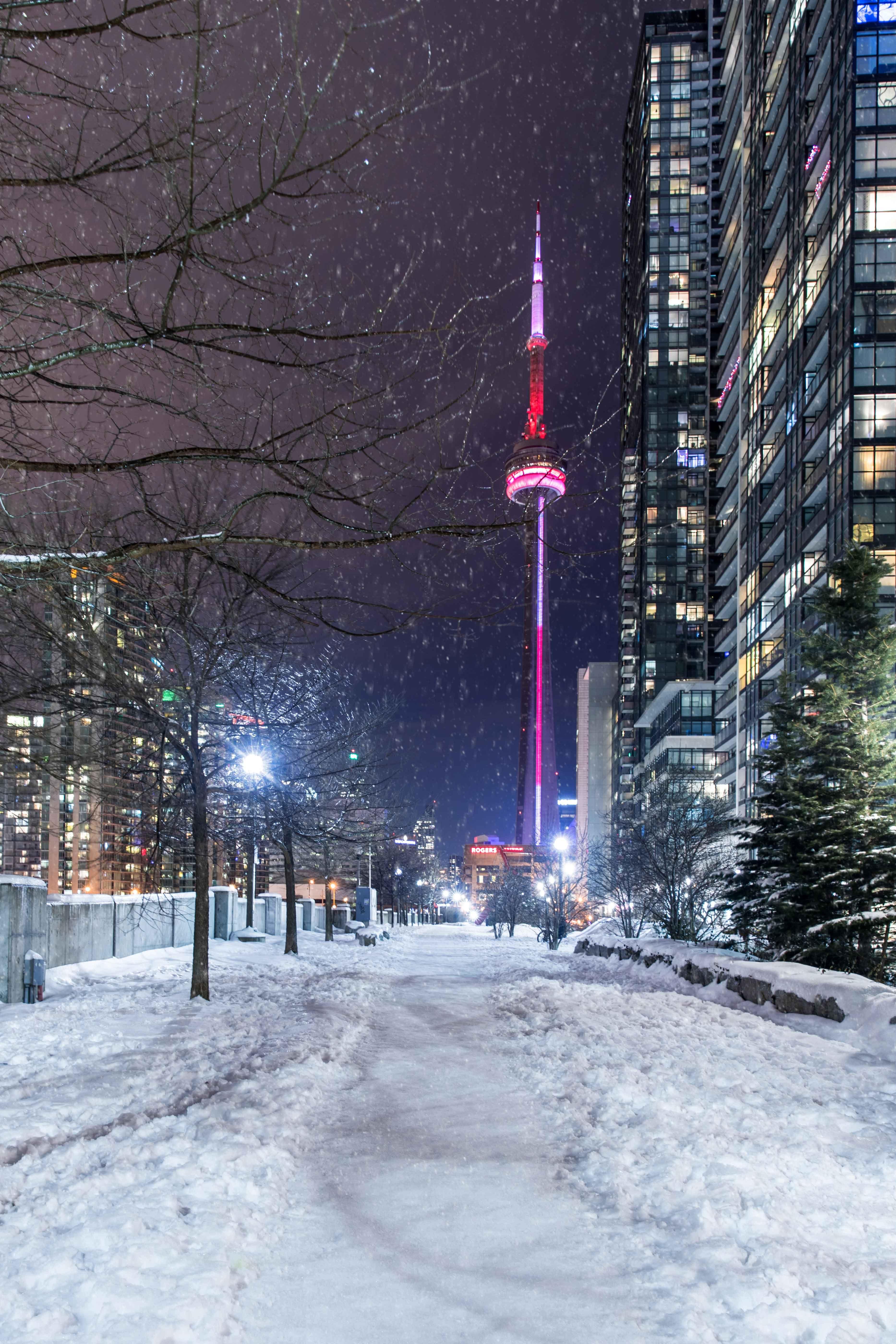 94 Toronto Ideas In 2021 Toronto Toronto City Toronto Canada