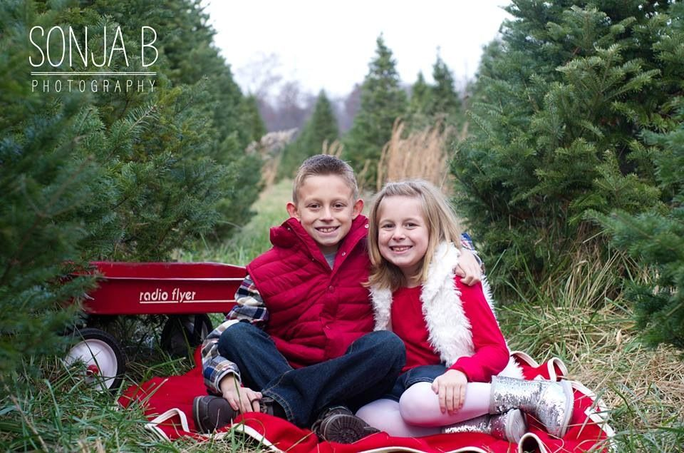 Superb Christmas Tree Farm Session In Cincinnati Ohio Captures By Sonja B  Photography