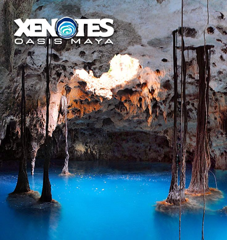 Choose From The Best Tours In Cancun And Riviera Maya And