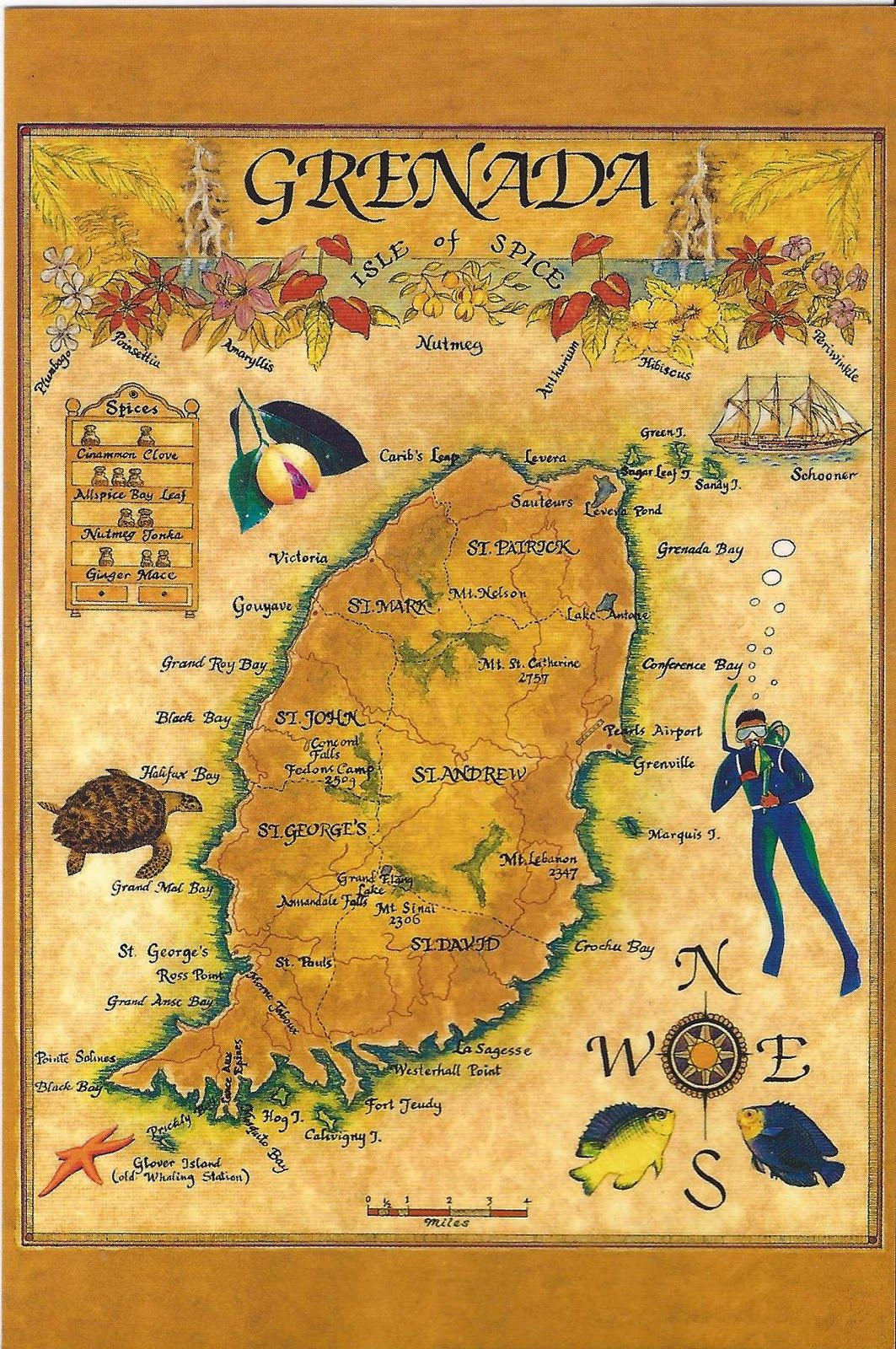 Grenada illustrated map Island hopping in the Caribbean Day 14 of