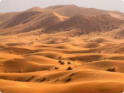 The Sahara Desert: The Most Beautiful Places, Is probably