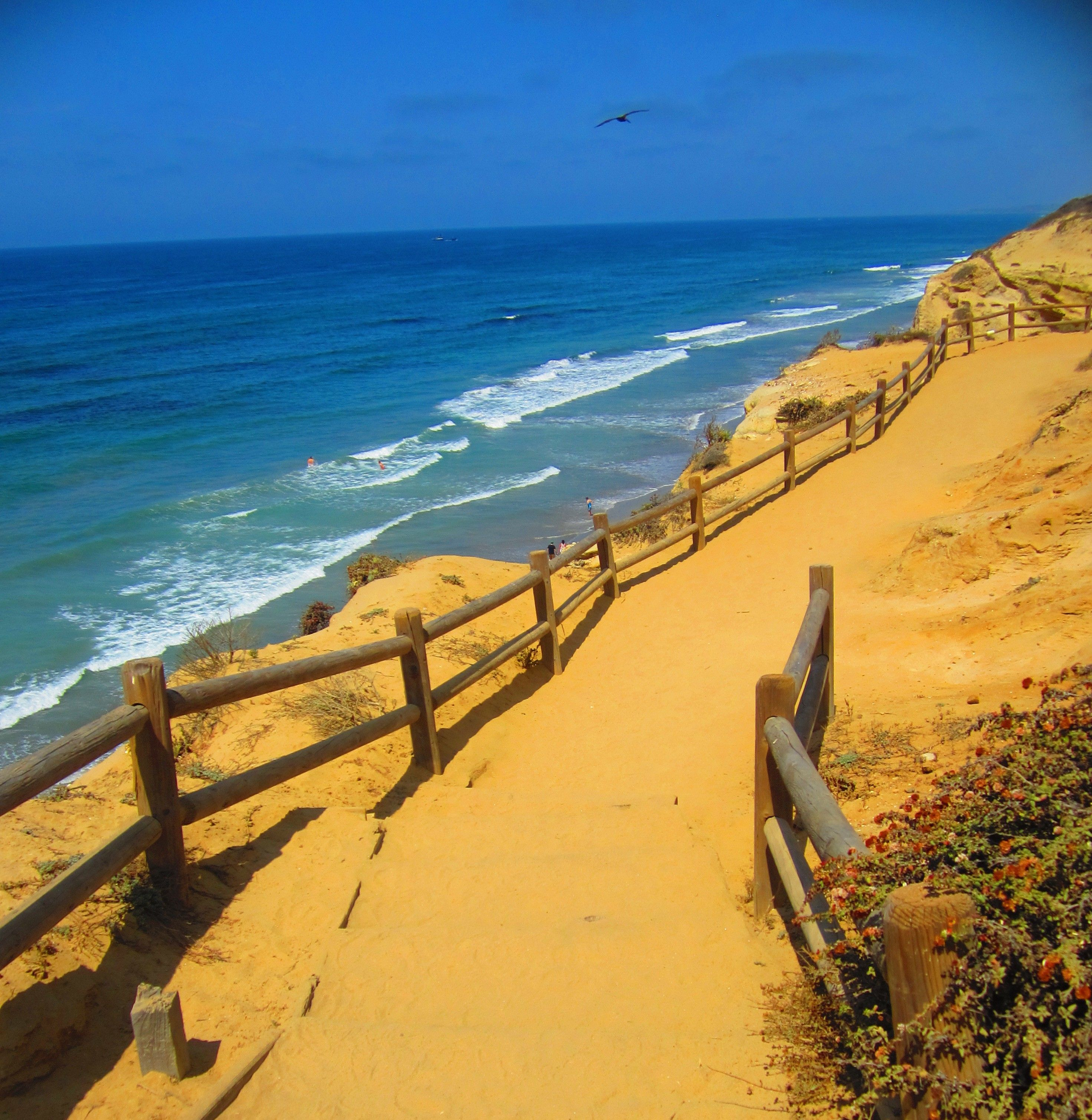So Pretty Torrey Pines State Park For Hiking Gorgeous