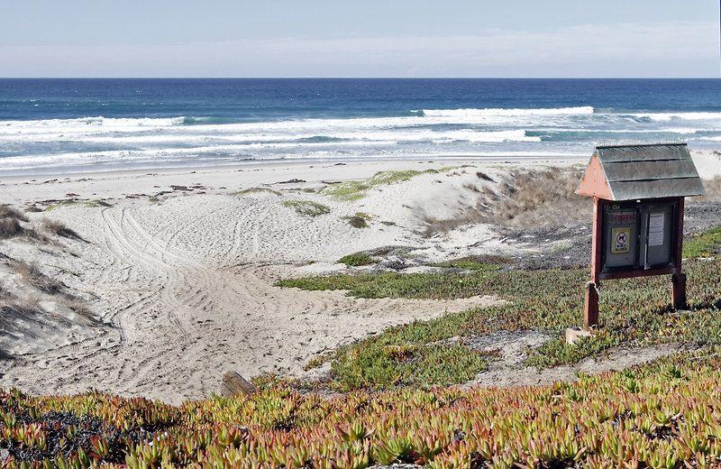 Enjoy A Stroll On Surf Beach In Lompoc California