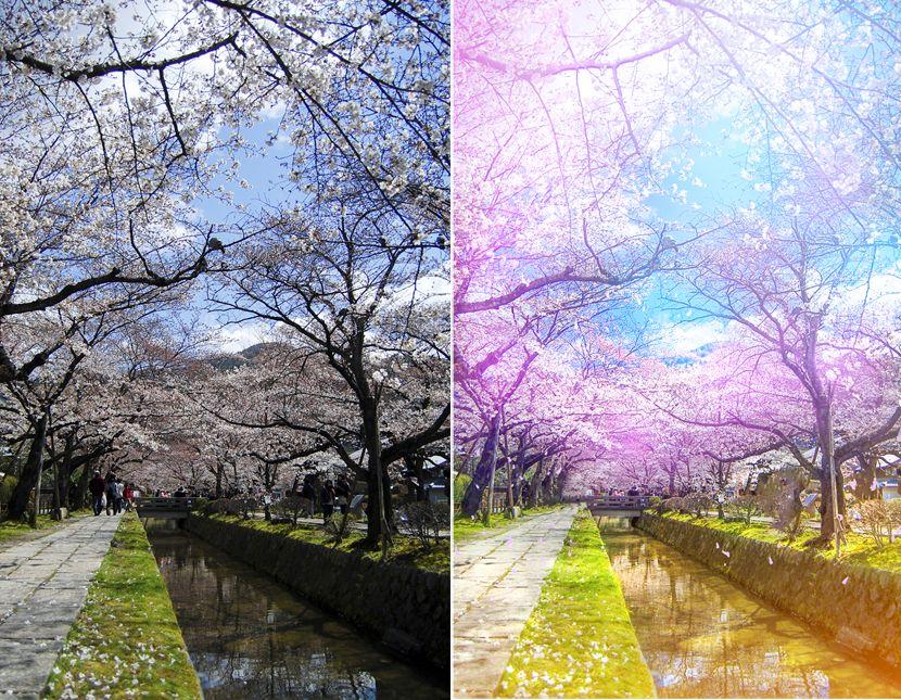 簡單步驟把櫻花照片 PS 成日本動畫風格 (With images)   Photoshop,為了避免造成過多外部連結,您可以立即建議動畫GIF。 在以下關於製作動畫GIF的教程中, 從認識Photoshop的基本操作開始,原圖長這樣:處理後就變成了這樣:酷炫如此,如果您有權訪問Photoshop並且需要幾分鐘時間, WordPress