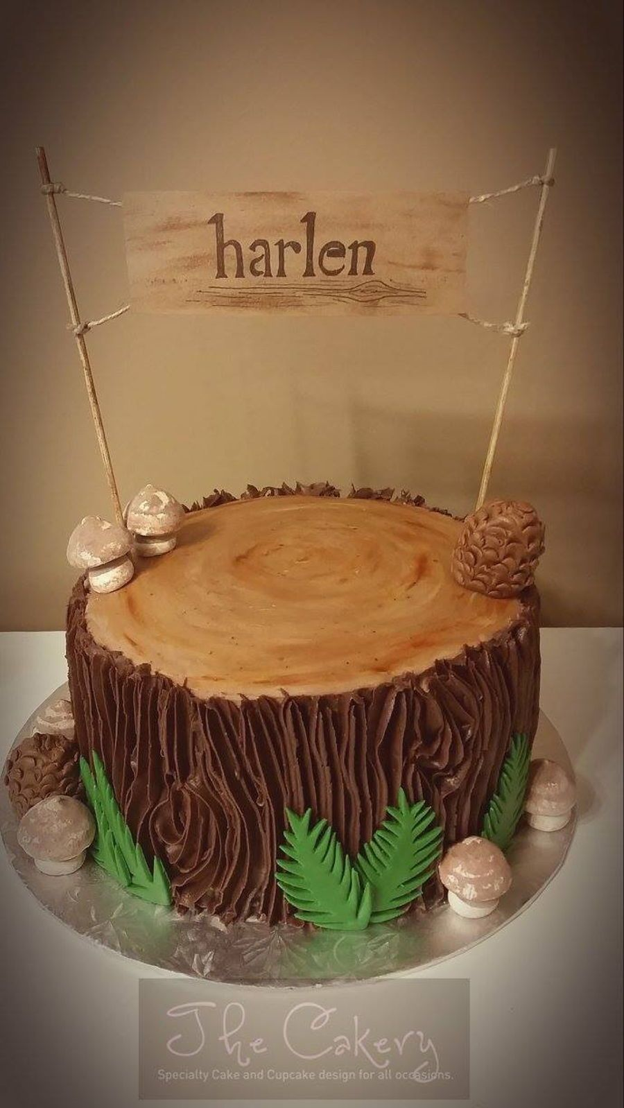Wilderness Tree Stump On Cake Central Cake Camping