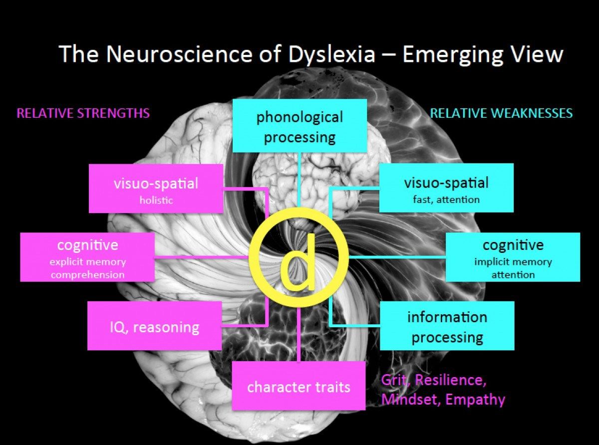 The New Neuroscience Of Dyslexia And Visit With Dr Fumiko
