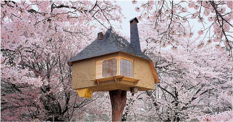 Naked women in treehouses #13
