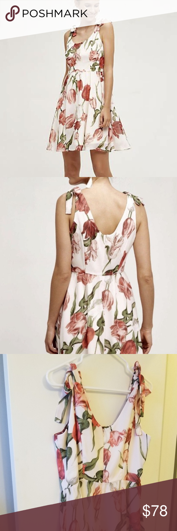 Anthropologie Pink Red Tulip Dress Fit And Flare L Anthropologie Pink Red Tulip Dress Fit And Flare L In Great Condition Pap Tulip Dress Fitted Dress Dresses [ 1740 x 580 Pixel ]