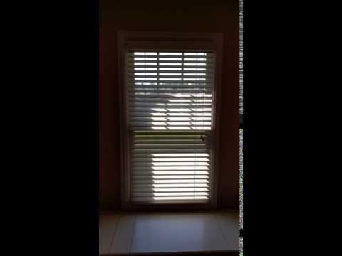 DIY motorized blinds for $40 | Motorized blinds, Diy ...